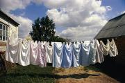 In A Row Art - Laundry On A Clothesline by Steve Raymer