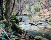 Smokey Mountains Paintings - Laurel Creek  by Jennifer Oakley-Delaplante