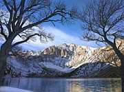 Convict Lake Art - Laurel Mountain And Convict Lake Framed by Tim Fitzharris