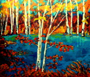 Laurentians Paintings - Laurentian Birch Trees by Carole Spandau