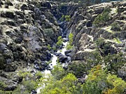 Frank Wilson - Lava Canyon