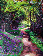 Choice Paintings - Lavendar Lane by David Lloyd Glover