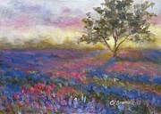 Chris Brandley - Lavender at Sunset