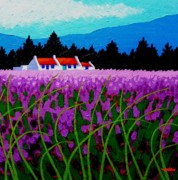 Impressionism Acrylic Prints Art - Lavender Field - County Wicklow - Ireland by John  Nolan
