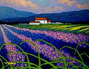 Lavender Field France Print by John  Nolan