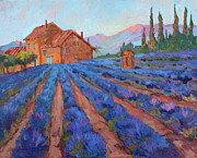 Impressionism Photo Originals - Lavender Field Provence by Diane McClary