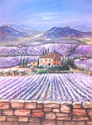 Invitations Painting Originals - Lavender fields in Tuscany by Cecilia Putter