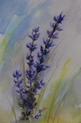 Lavender Paintings - Lavender by Gretchen Bjornson