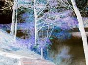 Leela Arnet - Lavender lake
