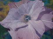 Barbara Barber - Lavender love spell