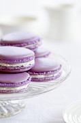 Home Plate Framed Prints - Lavender macarons Framed Print by Ruth Black