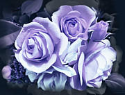 Purple Roses Photo Prints - Lavender Rose Flower Bouquet Print by Jennie Marie Schell