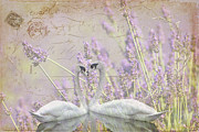 Purple Flowers Digital Art - Lavender Swans Zen  Love by ArtyZen Studios