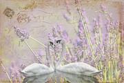 Lavender Swans Zen  Love Print by ArtyZen Studios