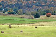 Tennessee Hay Bales Prints - Layers Of Fields Print by Jan Amiss Photography