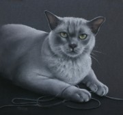 Grey Pastels Prints - Layla Print by Cynthia House