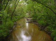 Creek Jewelry Prints - Lazy Creek Print by Rob  Parker