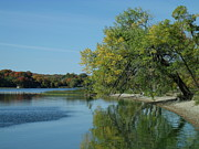 Lazy Originals - Lazy Fall Tree over Glassy Lake by Brian  Maloney