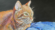 Orange Cat Pastels Posters - Lazy Gazing Poster by Gina Ward