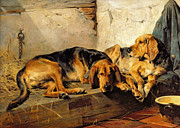 Hound Dogs Framed Prints - Lazy Moments Framed Print by John Sargent Noble