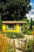 Le Jardin De Vincent Print by Chris Thaxter
