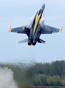 F-18 Posters - Lead Solo Pilot Of The Blue Angels Poster by Stocktrek Images
