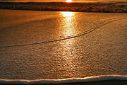 Beach Photograph Prints - Leading Edge Print by Steven Ainsworth
