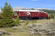 Grassy Field Posters - Leadville Colorado and Southern Railroad Car Poster by Brendan Reals
