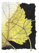 Tropical Drawings Posters - Leaf Poster by Elena Yakubovich