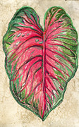 Red Leaf Mixed Media Posters - Leaf Poster by Mindy Newman