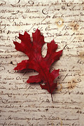 Red Leaf Posters - Leaf on letter Poster by Garry Gay