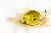 Leaf Study No. 1 Print by Rebecca Stahr