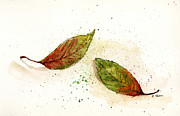 Nature Study Mixed Media - Leaf Study No. 2 by Rebecca Stahr