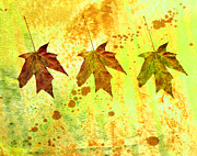Digital Collage Mixed Media Posters - Leaf Trio Poster by Ann Powell