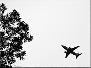 Passenger Plane Framed Prints - Leafing On A Jet Plane Framed Print by Brian Wallace
