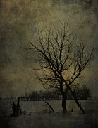 Vintage Photographs Prints - Leafless Breeze  Print by Jerry Cordeiro