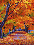 Lanes Prints - Leafy Lane Print by David Lloyd Glover