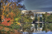 Reflections Prints - Leafy Ponds Edge Print by Richard Gregurich