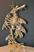 Still Life Sculptures - Leafy Sea Dragon by Victor Douieb