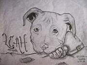 Bulls Drawings Originals - Leah by Brieana Turner