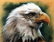 Eagle Painting Framed Prints - Leather Eagle Framed Print by J W Baker