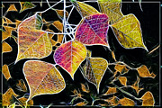 Leaves Print by Judi Bagwell