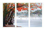 Vivid Water Posters - Leaves of Red Poster by Darren Fisher