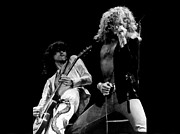 Led Zeppelin Prints - Led Zeppelin Print by Riccardo Zullian
