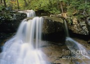 Scenic Drive Prints - Ledge Brook - White Mountains New Hampshire USA Print by Erin Paul Donovan