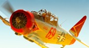 Fan Originals - Lee Oman and T-6 Race 69 Eros 2010 Reno Air Races by Gus McCrea