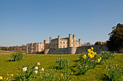 Daffodils Posters - Leeds Castle in Spring 2 Poster by Chris Thaxter