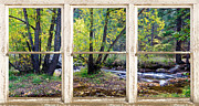 Window Photos - Left Hand Creek Rustic Window View Colorado by James Bo Insogna