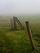 Fence Posts Photos - Left Leaning by Odd Jeppesen