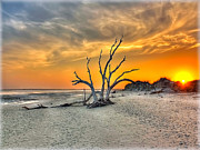 Unsolved Metal Prints - Left Standing Metal Print by Jenny Ellen Photography